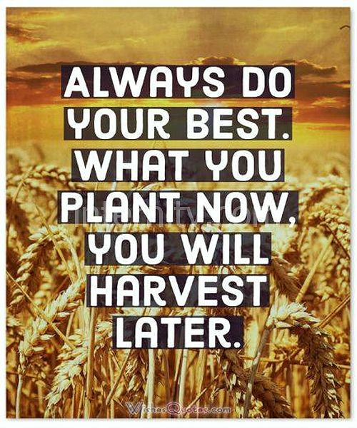Always do your best. What you plant now, you will harvest later.
